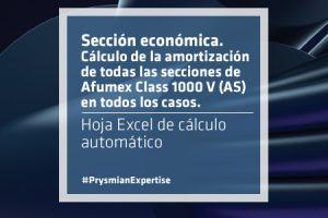 cap_articulo_cable_amortizacion